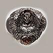 Ceraphron krogmanni (Hymenoptera: Ceraphronidae), ...