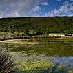 Biota from the coastal wetlands of Praia ...