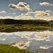 Biota of coastal wetlands of Praia da ...