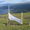 The Swedish Malaise Trap Project: A 15 ...