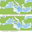 Stomatopoda of Greece: an annotated checklist