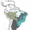 Distribution of endemic angiosperm species ...