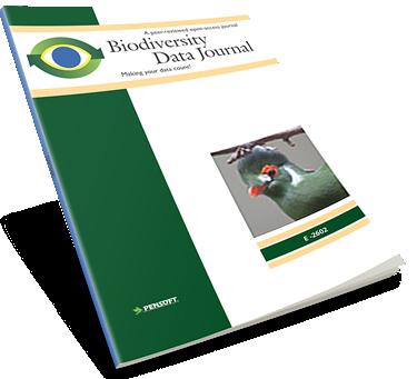 decision sciences journal author guidelines