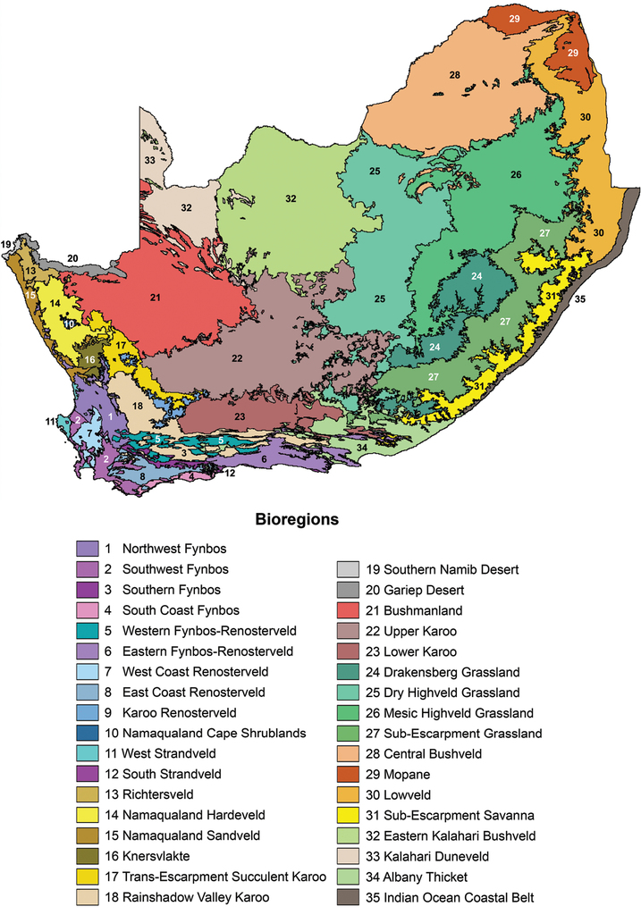 Veld In South Africa Map.Diversity And Biogeographical Patterns Of Legumes