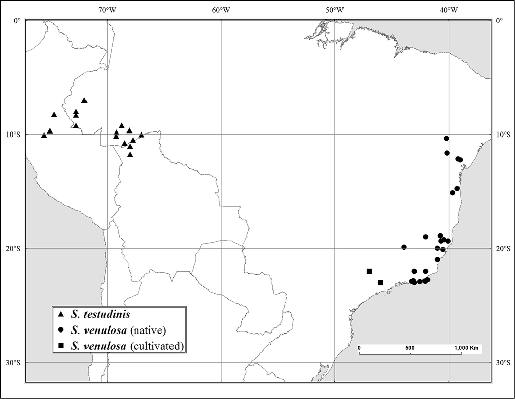 A revision of Spondias L. (Anacardiaceae) in the Neotropics on