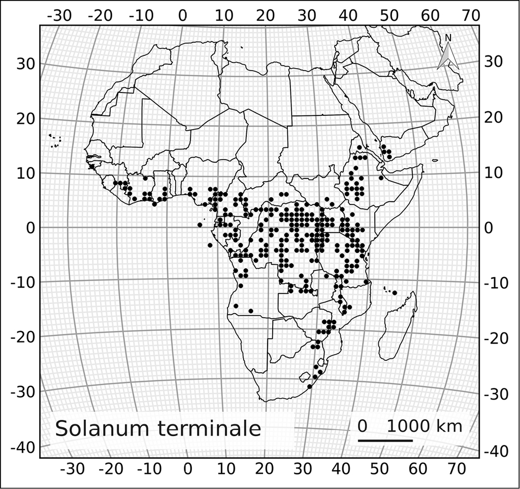 "A revision of the ""African Non-Spiny"" Clade of Solanum L  (Solanum"